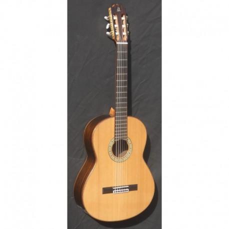 Guitarra admira A 10