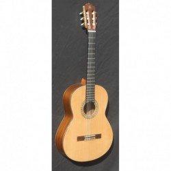 Guitarra admira A 15