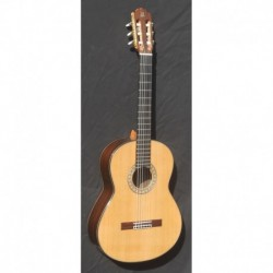 Guitarra admira A 20