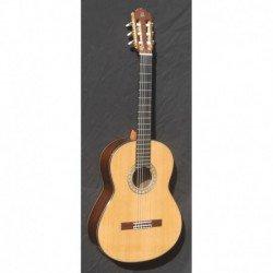 Guitarra admira A 20
