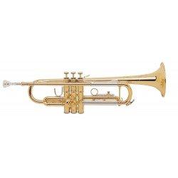 Trompeta en Sib TR200 TR200