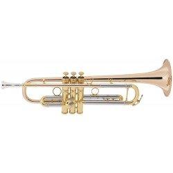 Trompeta en Sib 1BR Vintage...