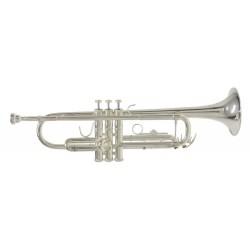 Trompeta en Sib TR-650S