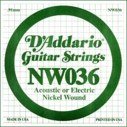 D'Addario NW036