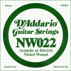 D'Addario NW022