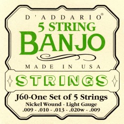 j60 5 string banjo stainless steel light 10 20