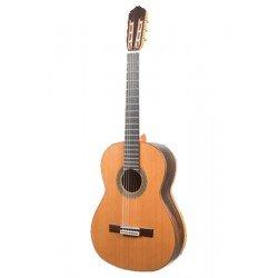 Guitarra Raimundo 131 Profesor