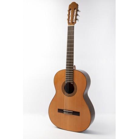 Guitarra Raimundo 118