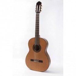 Guitarra Raimundo 120E