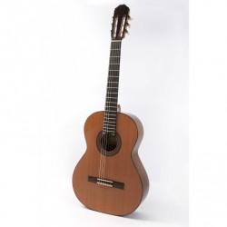 Guitarra Raimundo 136