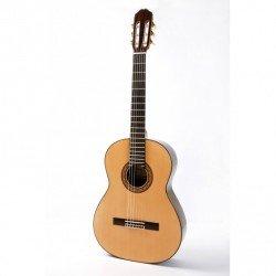 Guitarra Raimundo 140