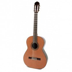 Guitarra Raimundo 148