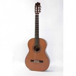 Guitarra Raimundo 180