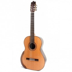 Guitarra Raimundo nx