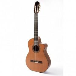 Guitarra Raimundo 610E
