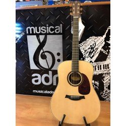 Guitarra Raimundo DS700E