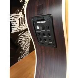 Guitarra Raimundo DS700E