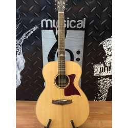 TANGLEWOOD TW170SS