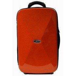 ESTUCHE BAGS 2 CLARINETES SIb/LA COBRE