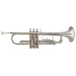 Trompeta AMADEUS TP 807L Niquelada