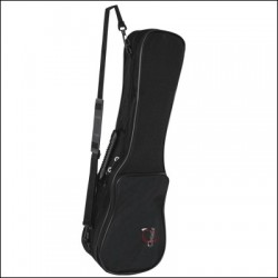 CANARIAN TIMPLE CASE REF. 505