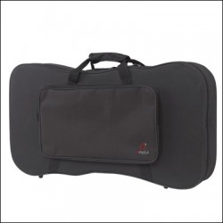 TWO CANARIAN TIMPLE FOAM CASE