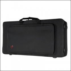 TENOR AND SOPRANO SAXOPHONE CASE REF. 8290