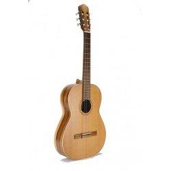 Guitarra Raimundo 105M
