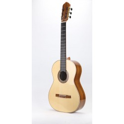 Guitarra Raimundo 132