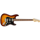 PLAYER STRATOCASTER PLUS TOP