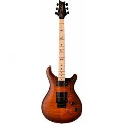 PRS GUITARS DUSTY WARING...