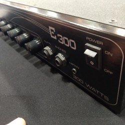 Eden E300