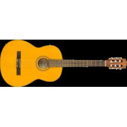 Fender ESC105 Educational...