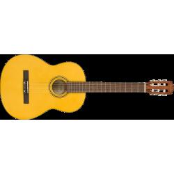 Fender ESC-110 Educational...