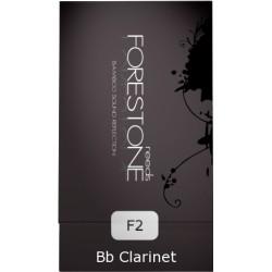 CANA FORESTONE CLARINETE XH STANDARD