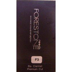 CANA FORESTONE CLARINETE MS PREMIUM