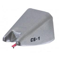 cs1 rs