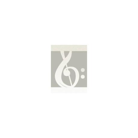 Bizet. Toreador's Song (Saxofon Alto y Piano)