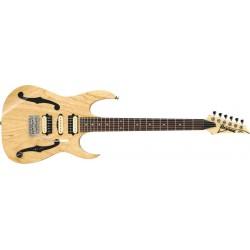 Guitarra Ibanez PGM80P-NT