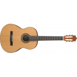 Guitarra Ibanez G15-LG