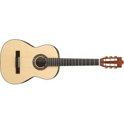 Guitarra Ibanez G10-3Q-NT