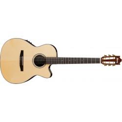 Guitarra Ibanez GM600CE-NT