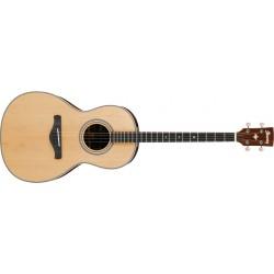Guitarra Ibanez AVT1-NT