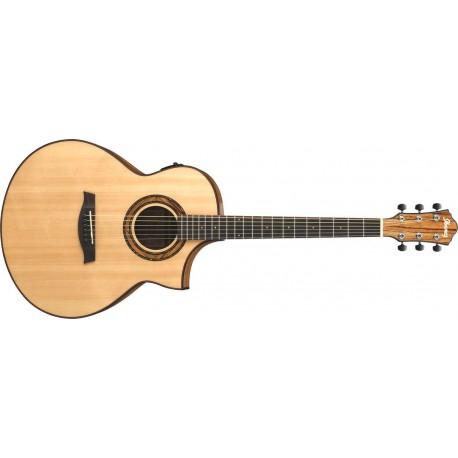 Guitarra Ibanez AEW23ZW-NT