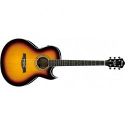 Guitarra Ibanez JSA20-VB