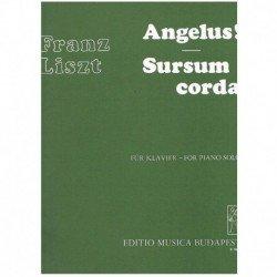 Liszt, Franz Angelus/Sursum...