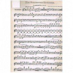 Mendelssohn, Sueño de una...