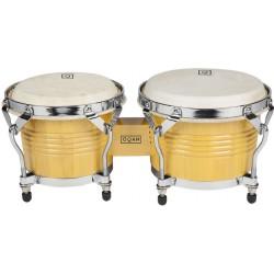 qpp b1 bongo