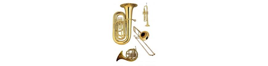 Instrumentos de Viento Madera y Viento Metal