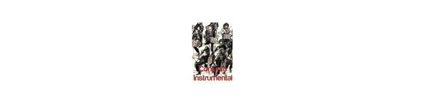 Conjunto Instrumental
